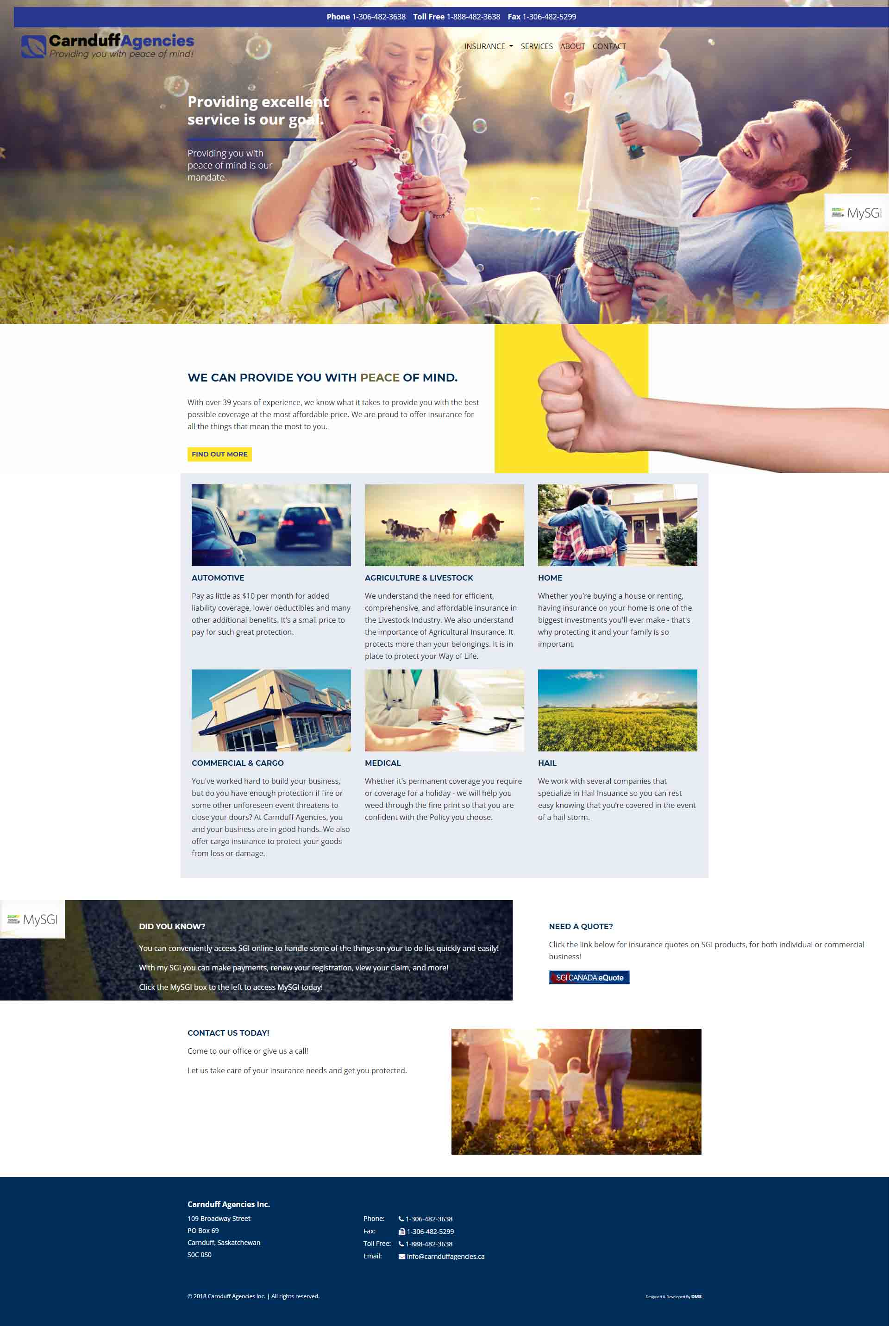 DMS Services Website Portfolio - Carnduff Agencies Inc.